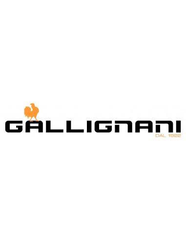 Despiece empacadora Gallignani mod. 4000